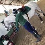 pantaloni da equitazione donna
